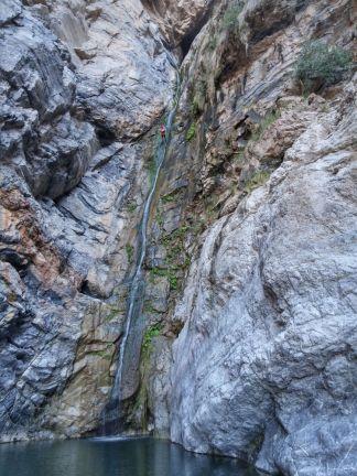 25. cascade R8