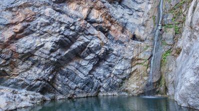 26. cascade R8